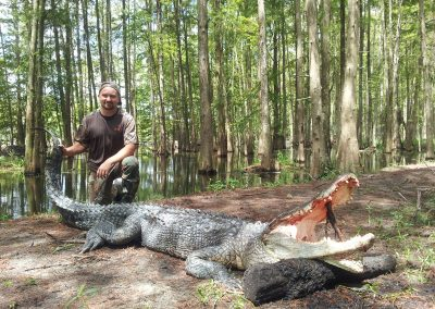 man kneeling holding the tail of large alligator hunted in florida
